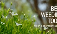 Best Weeding Tools: Guide & Recommendations