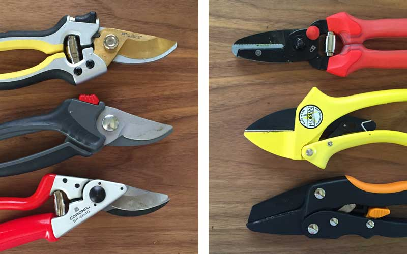 anvil and bypass pruner examples
