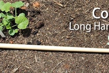 Review of CobraHead long handle weeder