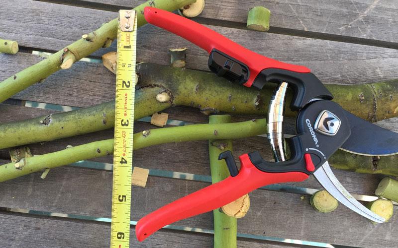 Corona Adjustable pruner handle open 2