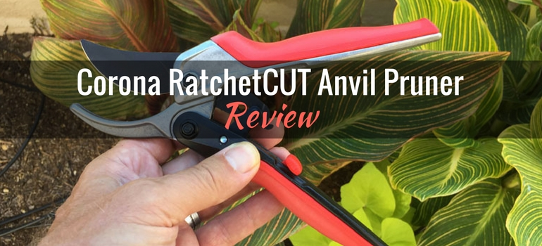 Corona-RatchetCUT-pruner-featured-image