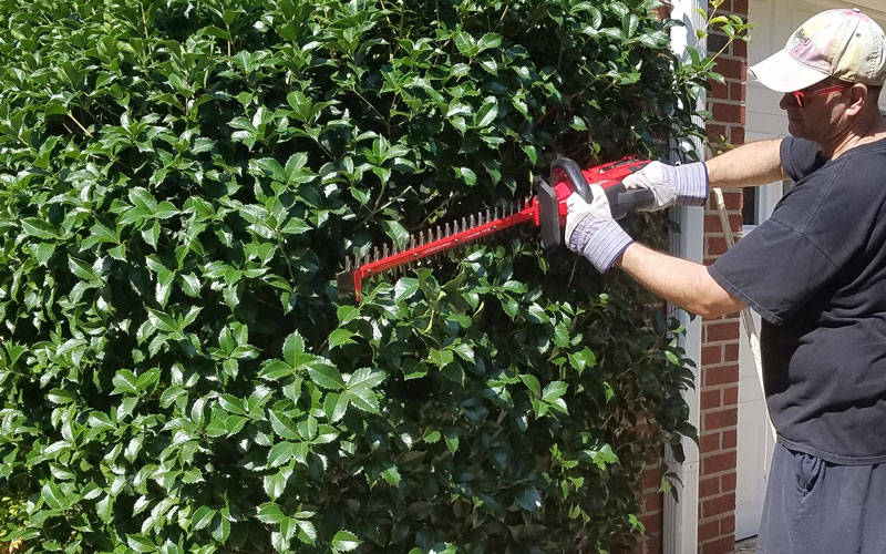 Craftsman 60V Hedge Trimmer needs a rotating head