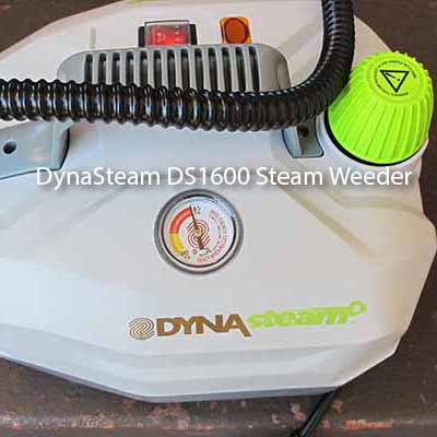 DynaSteam DS1600 Steam Weeder