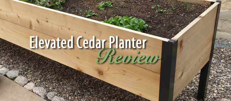 elevated cedar planter box review