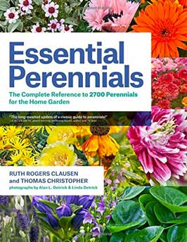 Essential Perennials book review - front cover