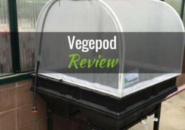 Vegepod featured image
