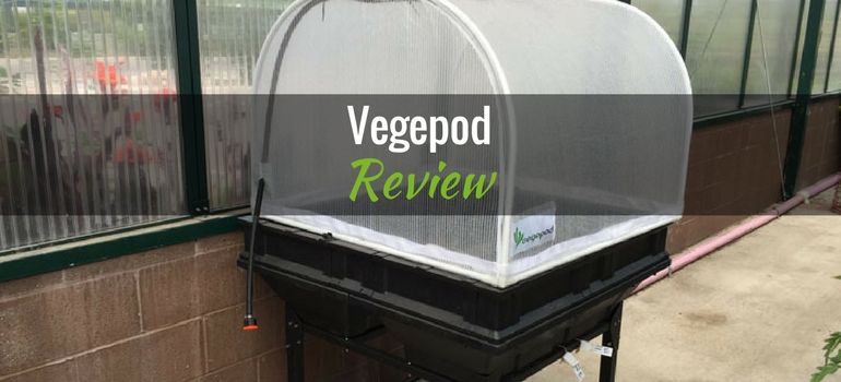 Vegepod featured image
