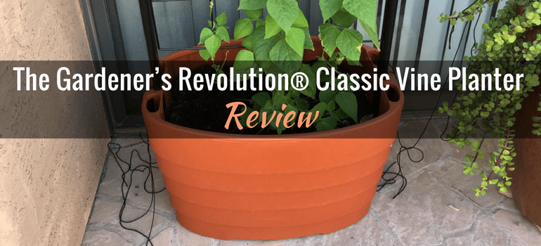 Gardeners Revolution classic vine planter featured image