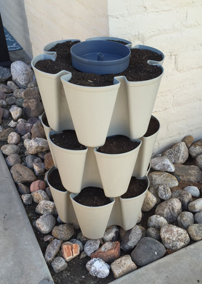 3 tiers of GreenStalk stackable planter