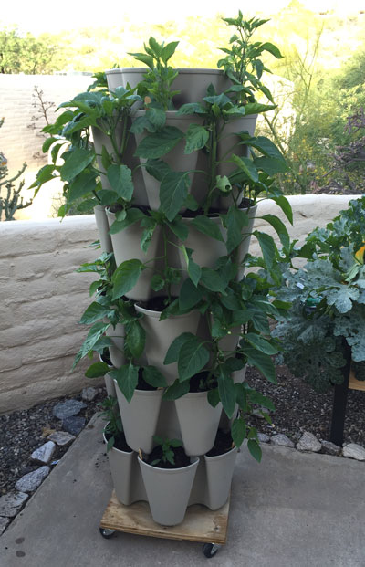 GreenStalk planter with peppers