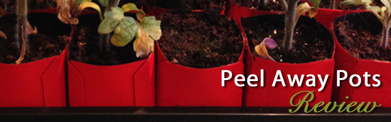 Peel Away Seed Starting Pots Review