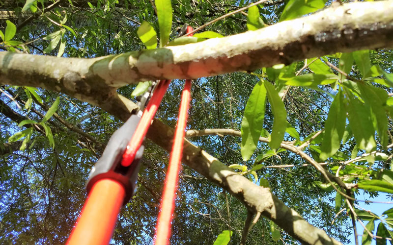 Corona extendable pruner not enough room to cut
