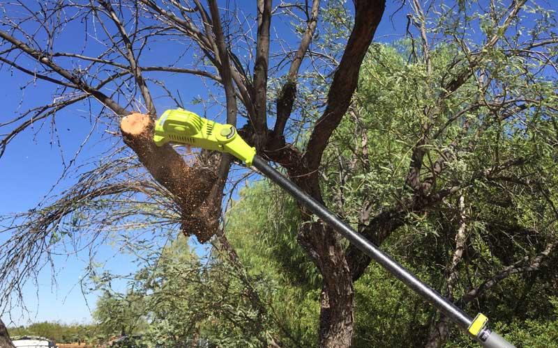 sunjoe-chainsaw-pole-pruner-cutting-through-7-inch-wood