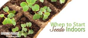 When to start seeds indoors