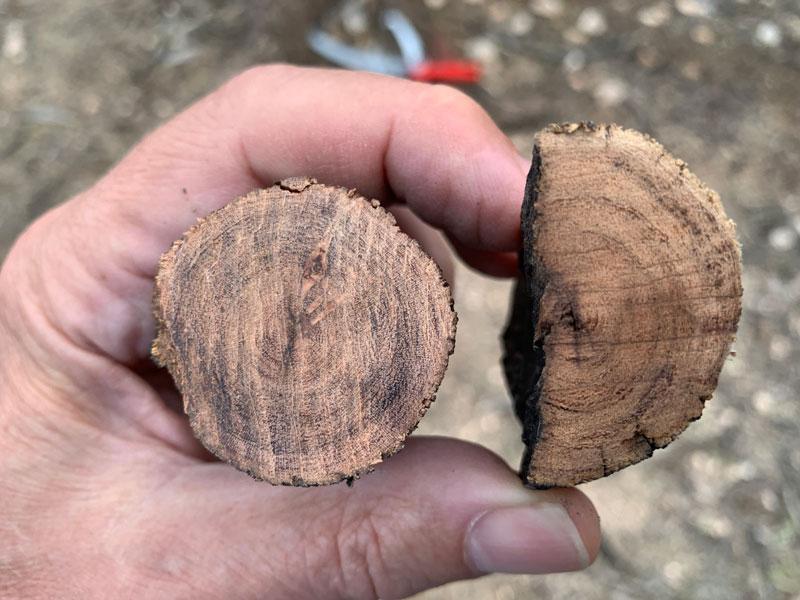 Wolf-Garten-Interlocken-cuts-vs.-triple-ground-teeth