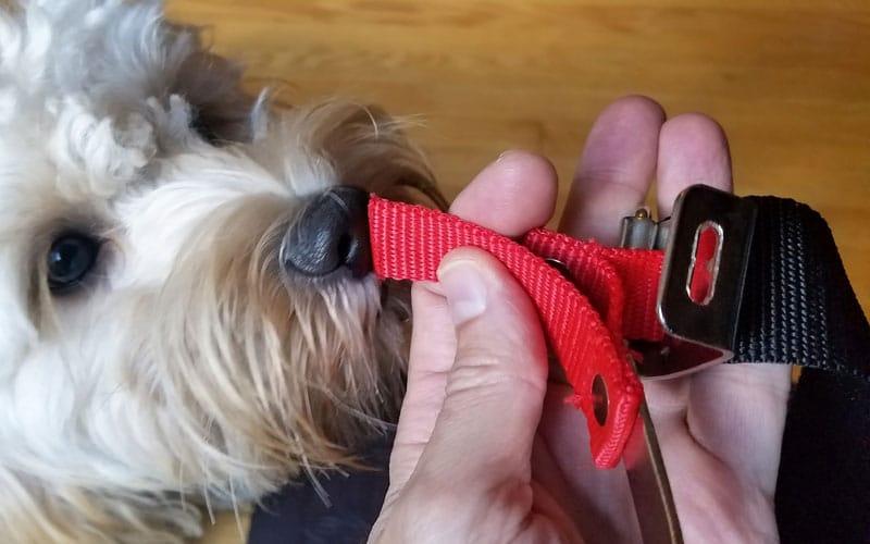 Yard-Force-120v-string-trimmer-harness-clip