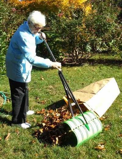 amazing-rake-raking