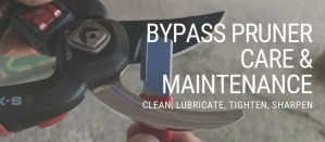 bypass pruner care and maintenance