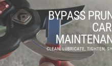 Bypass Pruner Care & Maintenance: Cleaning, Lubricating, Tightening & Sharpening