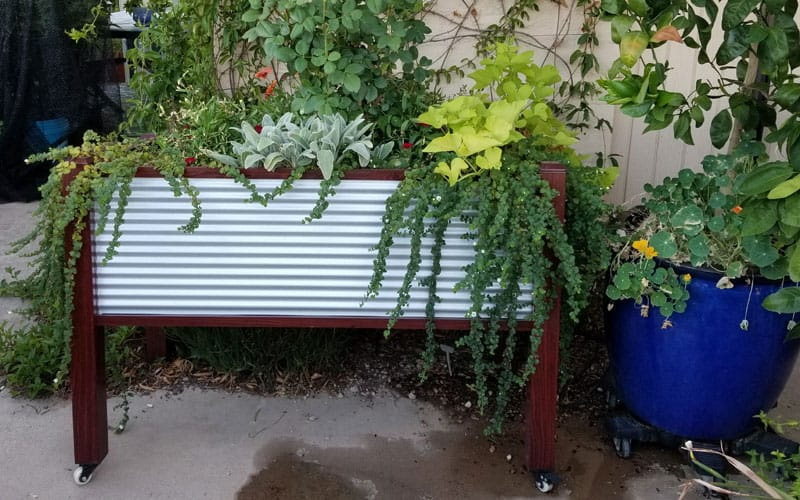 galvanized planter with wheels