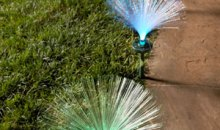 Solar Fiber Optic Decorative Outdoor Light from Four Seasons: Product Review