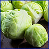 Brussels sprouts look like tiny cabbages