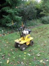 I hired this turf remover. It was effective but not perfect ...