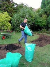 Next came the addition of about 40 bags of manure.