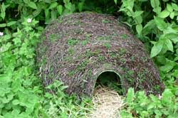 Hogitat - A perfect house for hedgehogs