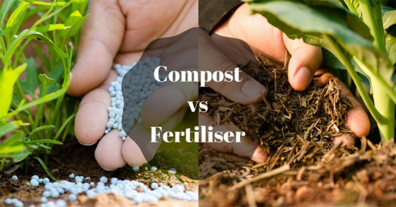 compost vs fertiliser