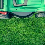Best Lawn Aeration