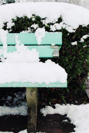 snow-1143802