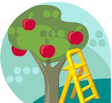 fruktplock