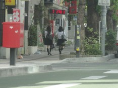 Okinawa 6