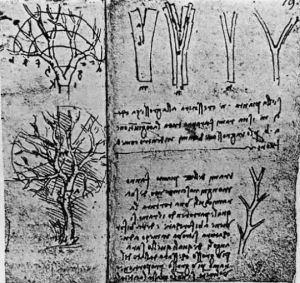 daVinci's notes on branch architecture