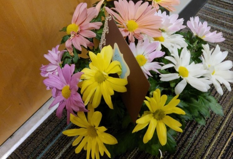 Flowers for Barbara: Cultivating Hope in a Pandemic