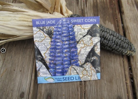 seed packet 2