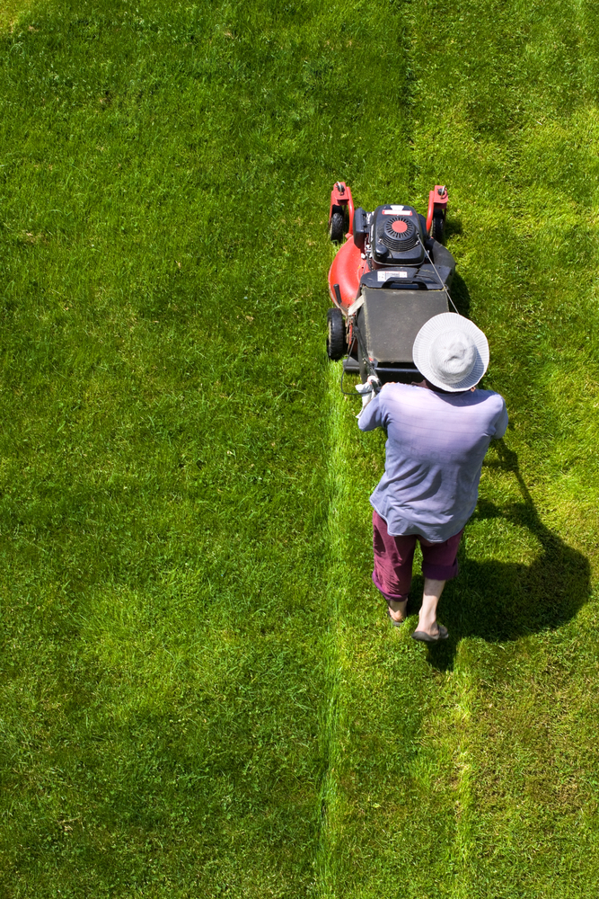 Lawn mowing image courtesy of Shutterstock
