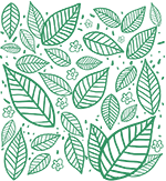 A graphic of leaves