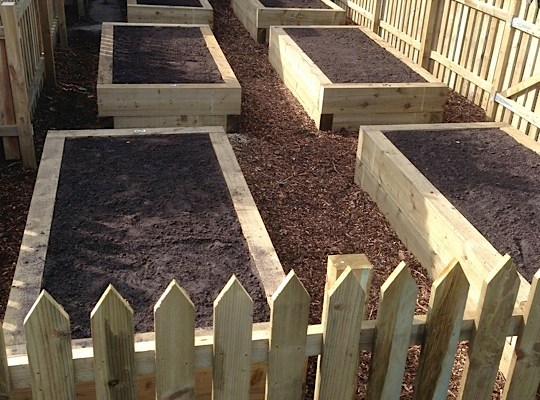 Creation of allotments in new social housing development