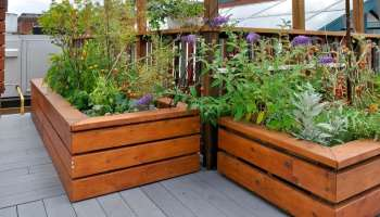 Raised Garden Bed Ideas: Yard Decor For Every Season on