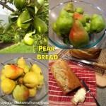 Pears & Pear Bread
