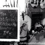The Bats & Spiders Kitchen Laboratory