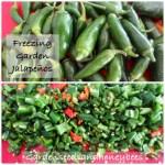 Freezing Garden Jalapeño Peppers