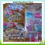 Seeds for the Garden 2014
