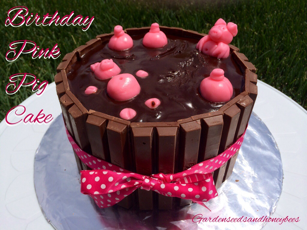 Birthday Pink Pig Cakehot Tub Pig Cake Garden Seeds And Honey Bees
