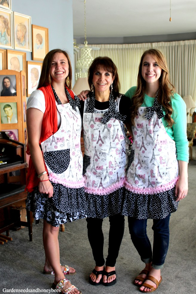 Paris Party Aprons