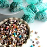 Spring Muddy Buddies