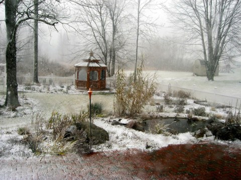 snowing garden 3