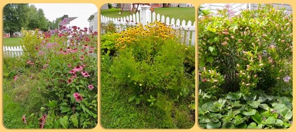 stuck ft garden1